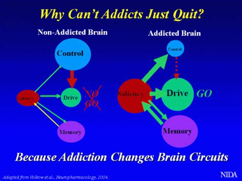 addiction diagram addiction information day 3 mind and xxvii