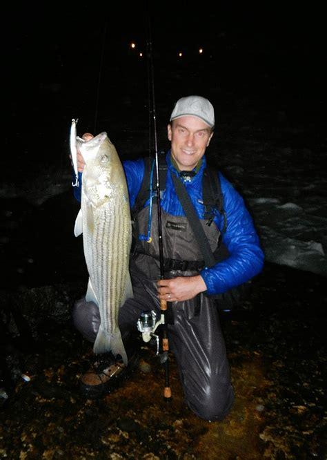 fish  york fishing  night  striped bass   york city