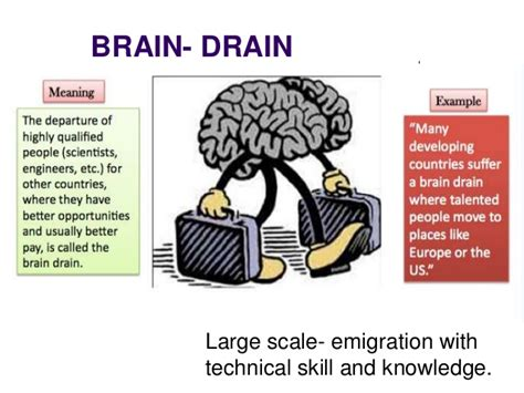brain drain is better than brain in drain brain drain