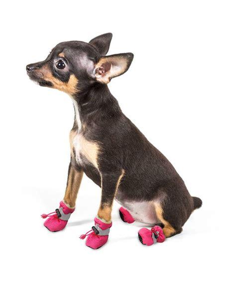 Chaussures Chien Bottines Grands Chiens Bottine Gros Chien Bottes Neige Petits Prix