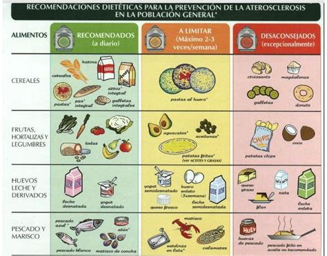 alimenti litio en im 225 genes c 243 mo prevenir la aterosclerosis con la dieta
