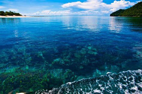 the coral sea coral sea and its jumping spotsrad sport brillen rad sport brillen