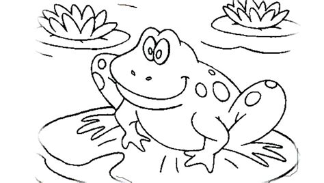 big frog coloring page frogs coloring pages ashleyoneill co