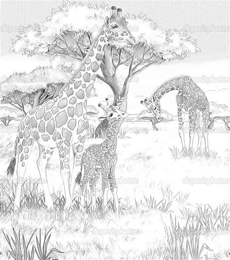 coloring pages  kids  african savanna coloring