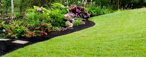 cincinnati lawn care services garden path landscaping