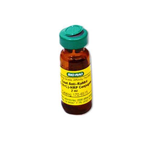 protein l hrp goat anti rabbit igg h l hrp conjugate 1706515