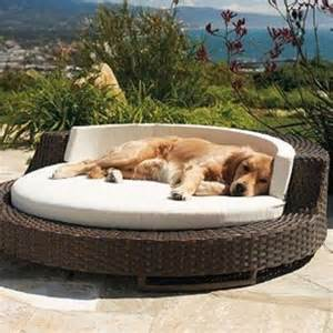 Outdoor Beds 36 awesome dog beds for indoors and outdoors digsdigs