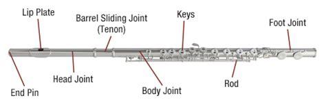 flute diagram labeled flute the partnership