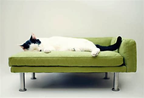 modern cat bed fancy modern pet bed chaise lounge chair cat bed small