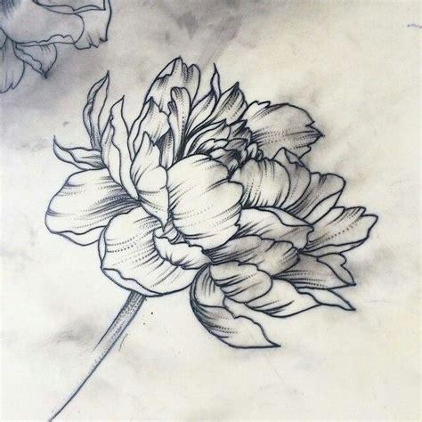 25 beautiful carnation tattoo ideas on pinterest