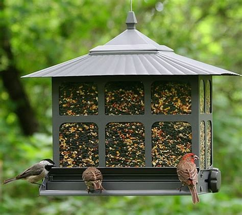 squirrel proof wild bird seed feedingnature com