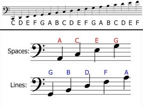 bass clef notes bass clef notes images reverse search