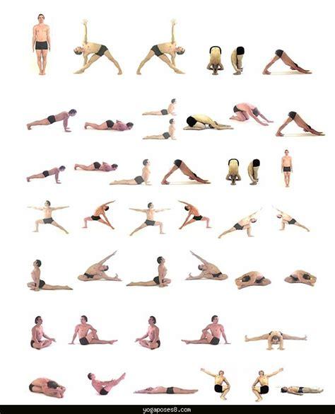 yoga tutorial flow easy hatha yoga poses yoga poses yogaposes com