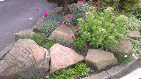 Garden Rockery Ideas Garden Are You On A Budget Get Inspired For Your