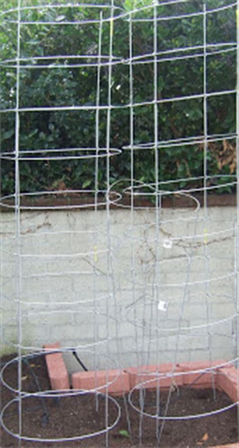 southern california vegetable garden texas tomato cages