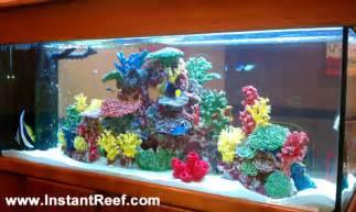 Coral Reef, Saltwater Aquarium, Amazing Aquariums, Saltwater Fish