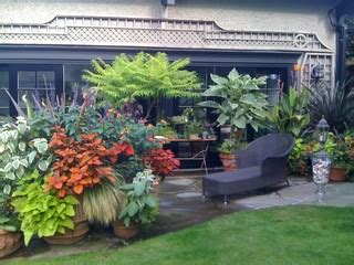 Outdoor Patio Design Vancouver Tropical Containers Tropical Landscape Vancouver