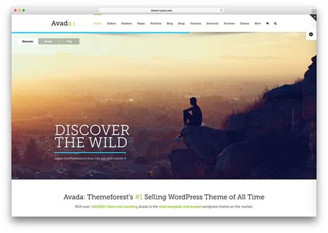 avada theme white screen 19 professional wordpress themes for programmers 2018