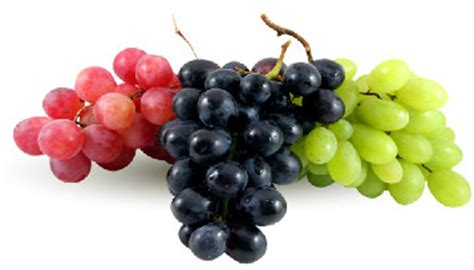 top brass table grapes
