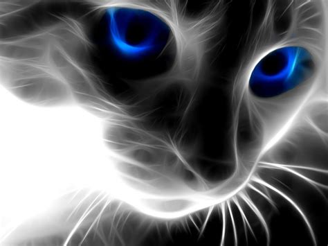hd wallpaper cool cat 3d abstract animals cat wallpapers latest1 3d abstract