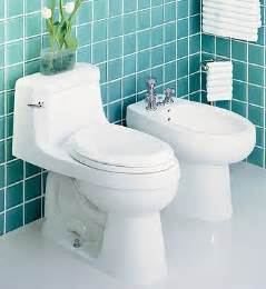 Two Toilets In One Bathroom Two Toilets In One Bathroom Universalcouncil Info
