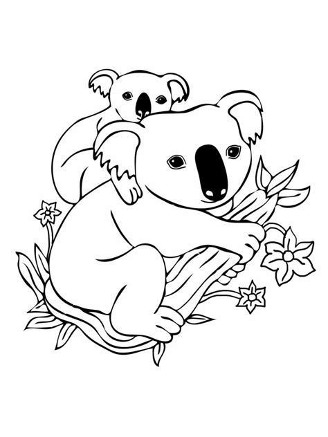 cute koala coloring pages free printable koala coloring pages for kids