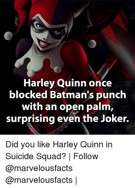 Harley Quinn Memes - funny suicide squad memes of 2017 on sizzle 9gag