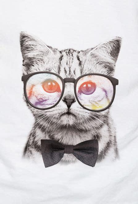 imagenes hipster gatos camiseta infantil gato hipster a beauty pinterest
