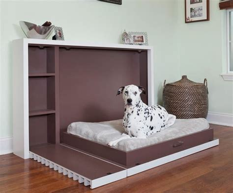 murphy bed for murphy bed for dogs dudeiwantthat com
