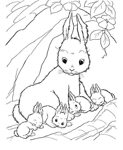 coloring pictures of baby bunnies bunny rabbits coloring pages az coloring pages