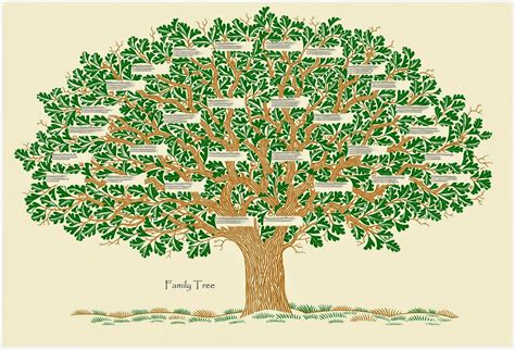 Tree Family scripture for today matthew 1 the genealogy of jesus
