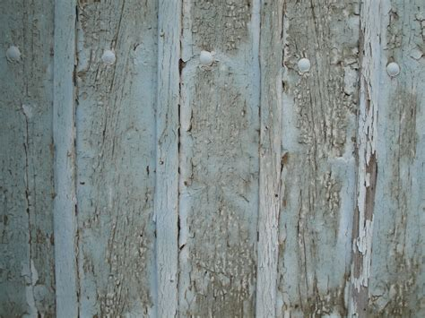 free images tree nature vintage texture plank floor trunk wall pattern color blue
