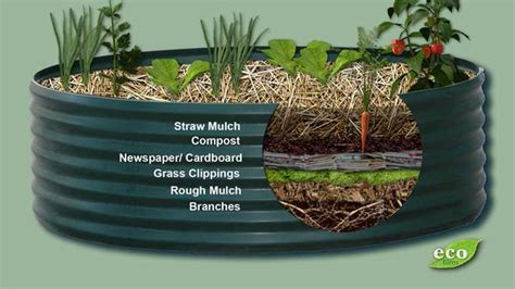 how much soil for raised bed must have soil amendments for new raised beds