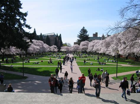 of washington uw جامعة واشنطن uw المرسال
