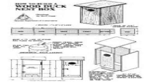 wood duck nesting boxes wood duck house plans  houses