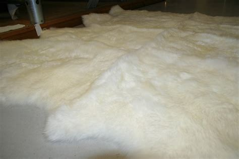 caring for sheepskin rug care and cleaning of sheepskin rugs santa barbara institute for consciousness studies