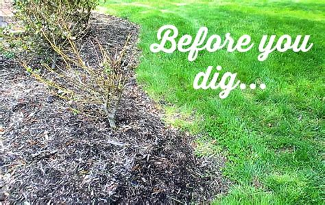 how to design a flower bed how to edge a flower bed and make it look sharp all summer home repair tutor