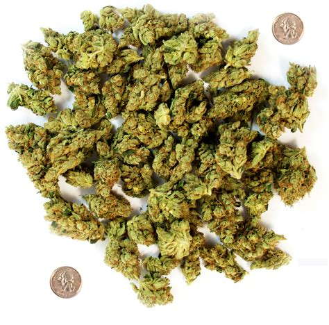 what does weed look like greenito