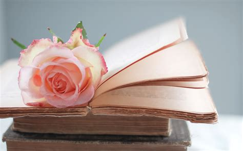 flower picture book on a book hd wallpaper hd wallpapers