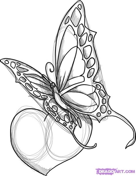 half butterfly tattoo designs greatest tattoos designs butterfly tattoos for
