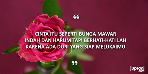 kata kata mutiara  tentang bunga juproni quotes