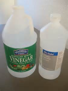Vinegar In Carpet Cleaner The Rehomesteaders Upholstery And Carpet Cleaner