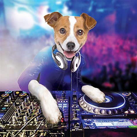 djs dogs 3d holographic birthday card dj mixing decks card ebay