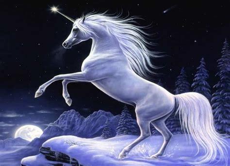 imagenes de unicornios y caballos sobre los unicornios y las empresas o compa 241 237 as unicornio