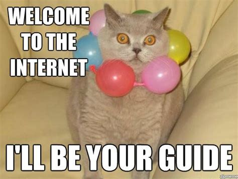 Cat Internet Meme - image welcome to the internet jpg animal jam wiki