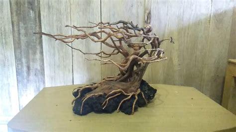 aquascape snail indonesia aquascape hardscape driftwood 2018 youtube