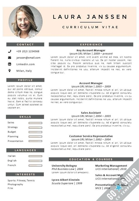 Amazing Professional Curriculum Vitae Sles Doc Photo Wordpress Themes Ideas German Cv Template In