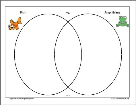 venn diagram of reptiles and hibians venn diagram reptiles and hibians cycle of