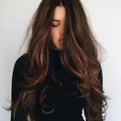 25 b 228 sta id 233 erna om brown hair colors p 229