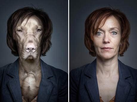 photographer proves dogs really do look like their owners